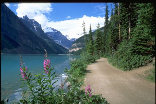 Lake Louise 1 - Banff National Park - Crédit photo Travel Alberta