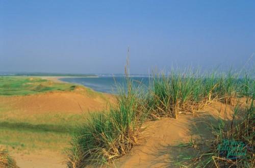 Dune - Credit Photo Tourism PEI Paul Baglole