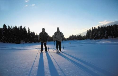 Hiver BC - Credit Photo Fisher ski
