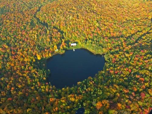 Lac et forêt - Crédit Photo M. Julien Tourisme Mauricie
