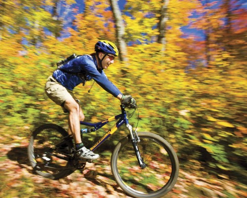 Velo Parc Algonquin - Credit Photo Ontario Tourism